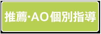 推薦・AO個別指導